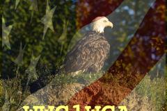 12-03-NINILCHIK-EAGLE-_WWG1WGA
